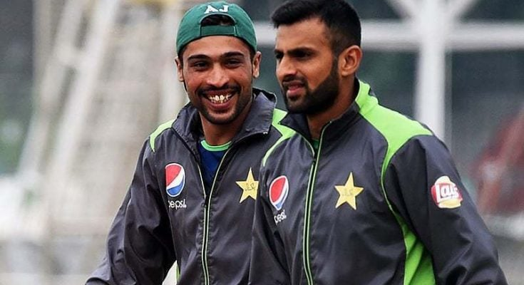 Malik Hafeez and Amir hurt in PCB central Contract list 2019-20